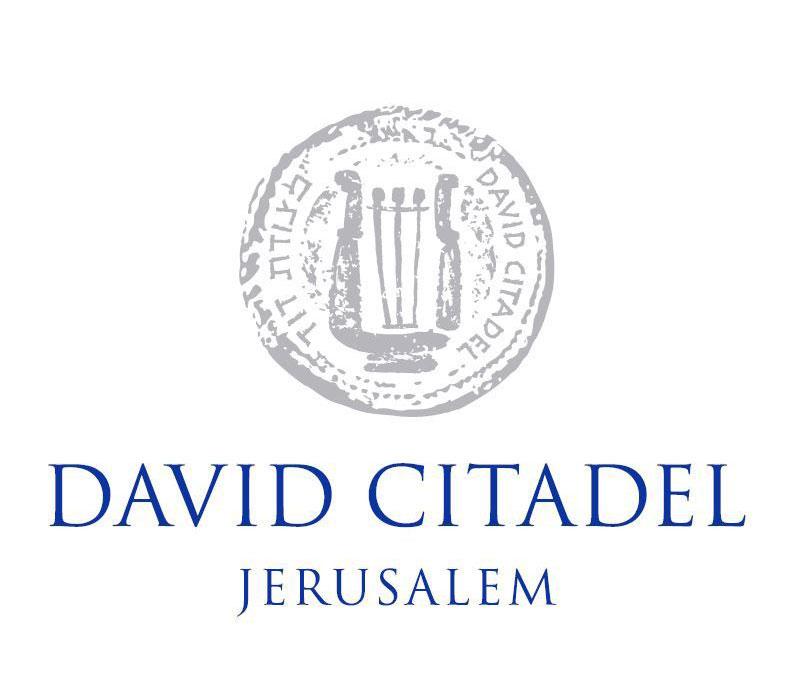 מצודת דוד לוגו